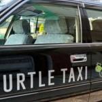 Такси-черепаха